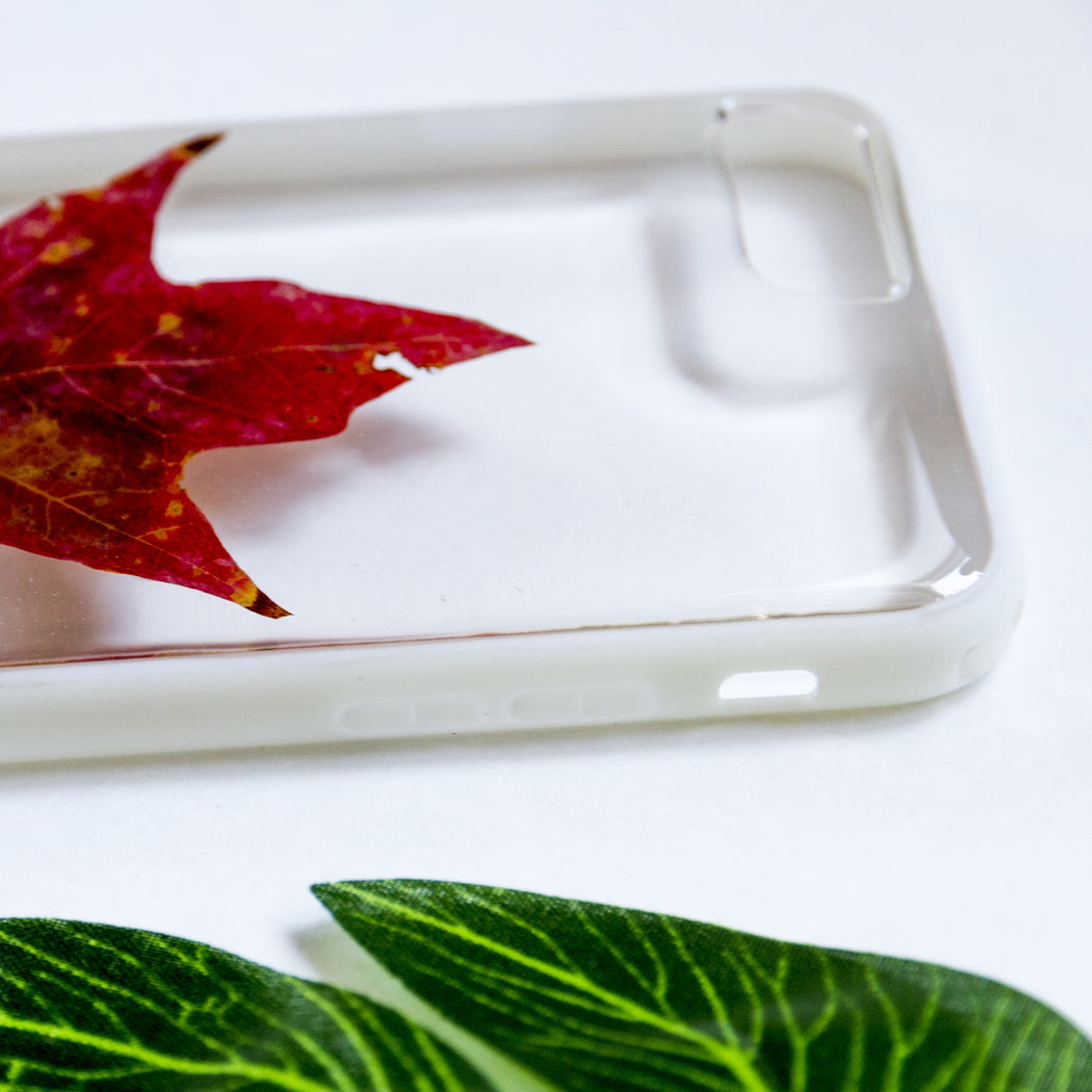 Maple Leaf | Pressed Flower iPhone Bumper Case | iPhone 7/8