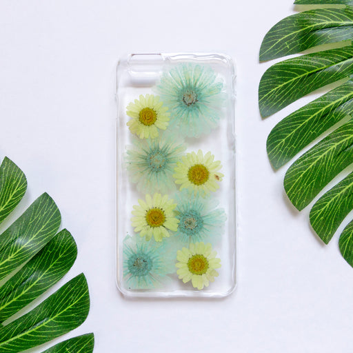 Mint Daisy | Pressed Flower iPhone Case | iPhone 6/6s Plus