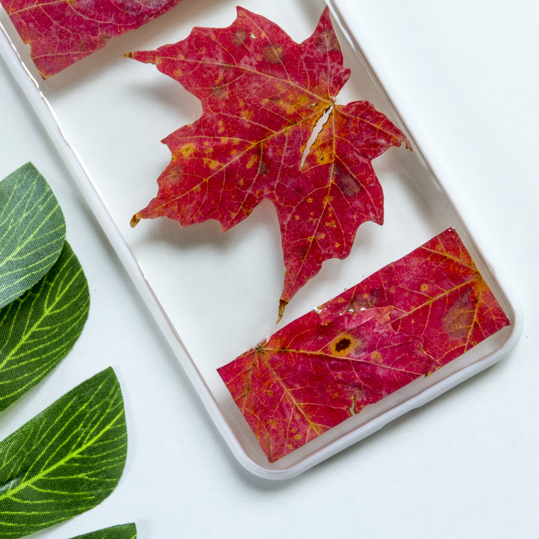 Oh Canada | Pressed Flower iPhone Bumper Case | iPhone 7/8 Plus