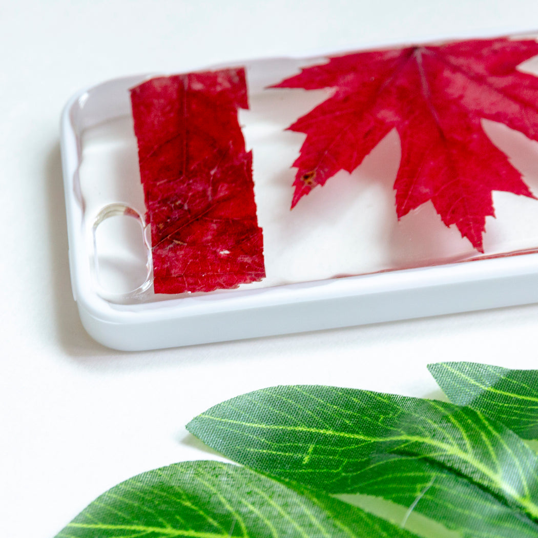 Oh Canada | Pressed Flower iPhone Bumper Case | iPhone 5/5s/SE