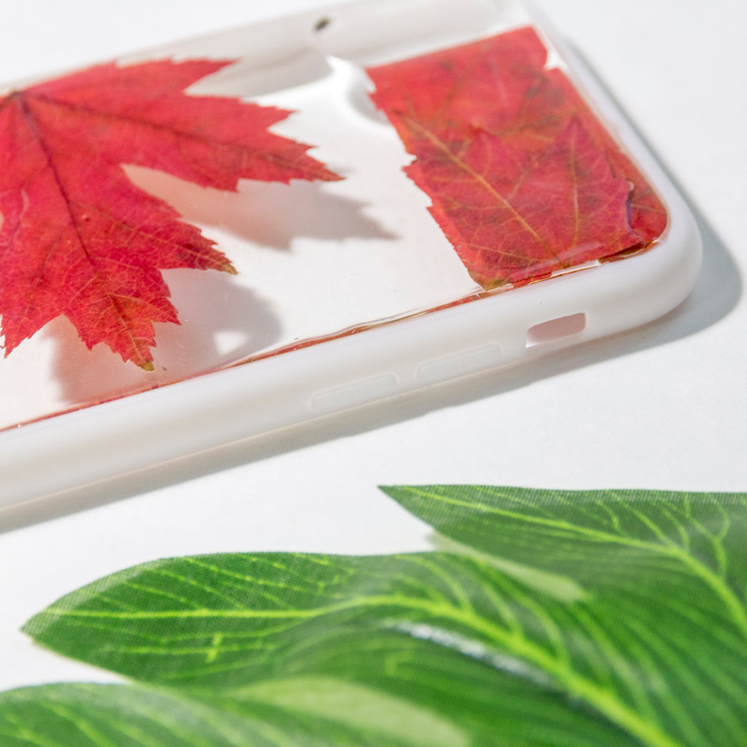real_pressed_flower_maple_leaf_cute_protective_anti_drop_iPhone_X_XS_Floral_Bumper_case_Oh_Canada_Floral_Neverland_Floralfy