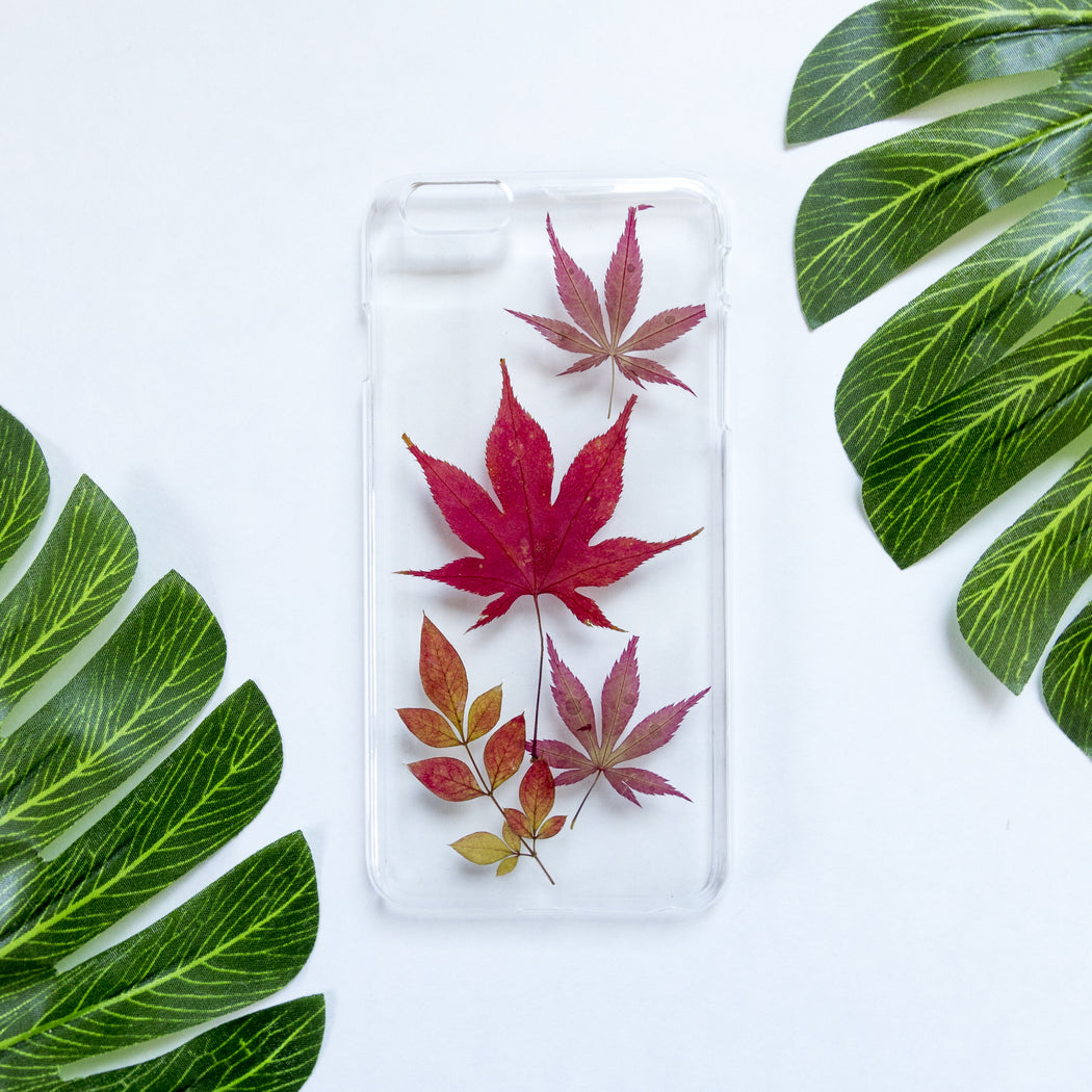 Warmth | Pressed Flower iPhone Case | iPhone 6/6s Plus