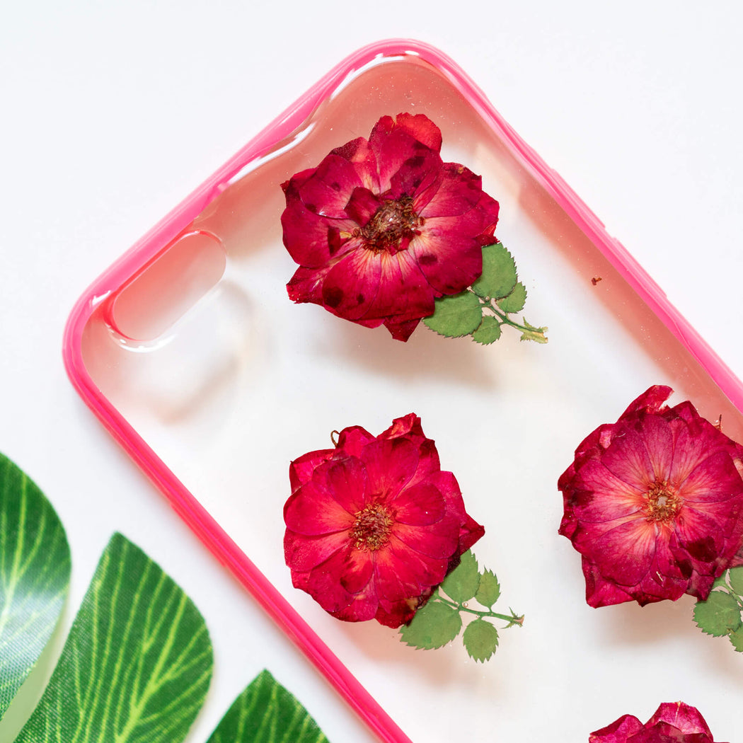 Rosie | Pressed Flower iPhone Bumper Case | iPhone 6/6s