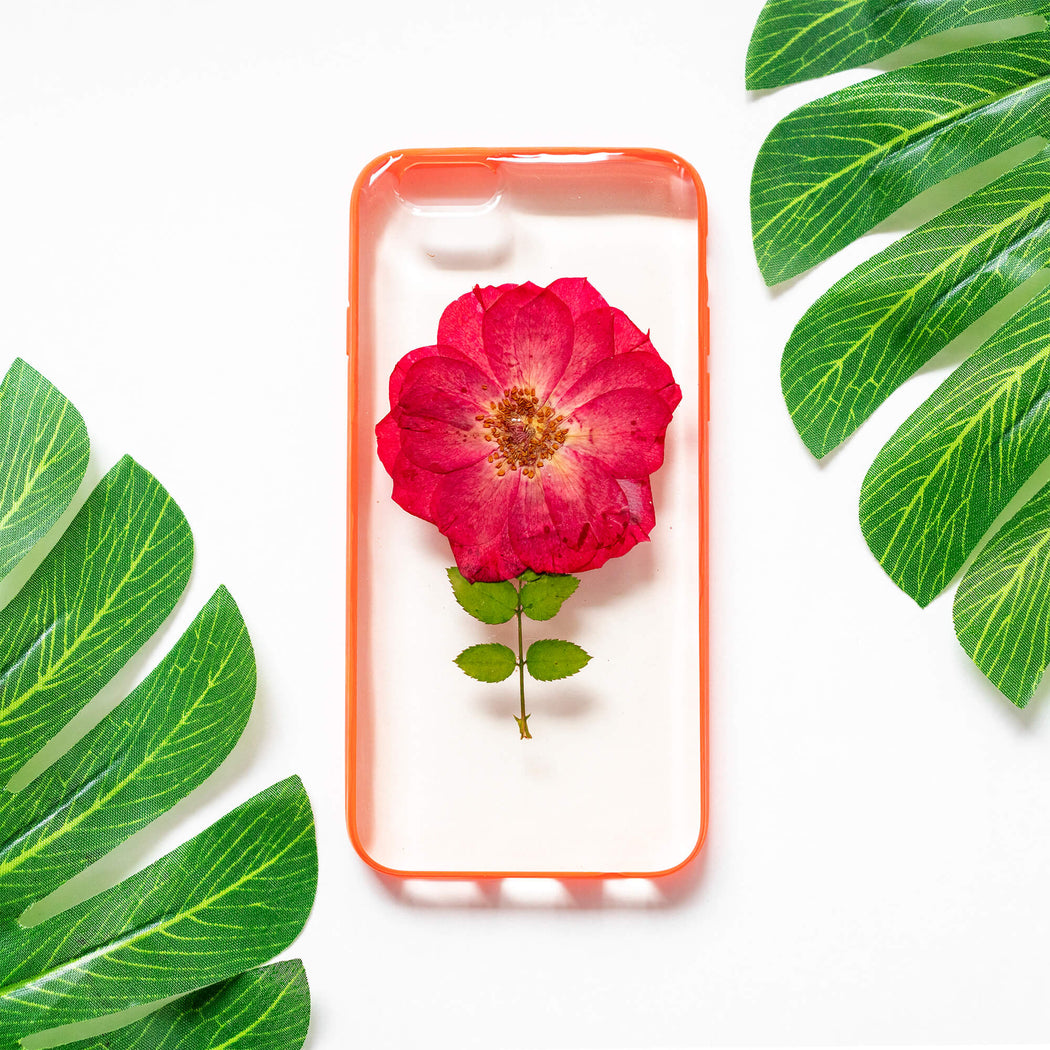 Single Bloom | Pressed Flower iPhone Bumper Case | iPhone 6/6s