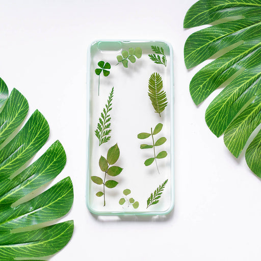 Sage | Pressed Flower iPhone Bumper Case | iPhone 6/6s Plus