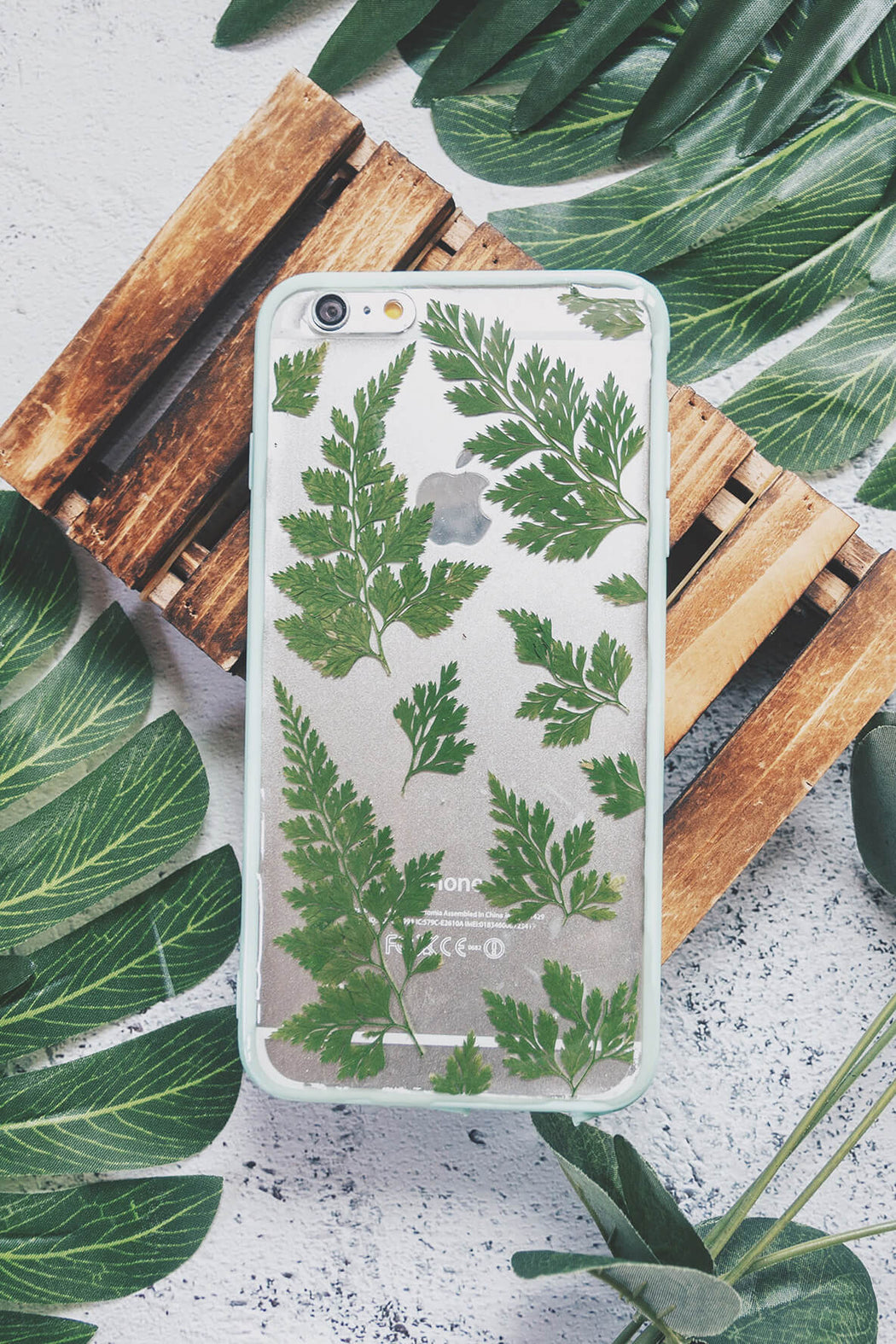 Willow | Pressed Flower iPhone Bumper Case | iPhone 6/6s Plus