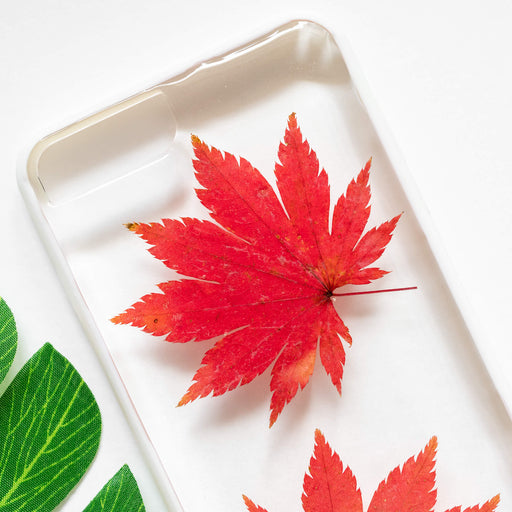 Japanese Maple Leaf | Pressed Flower iPhone Bumper Case | iPhone 7/8 Plus