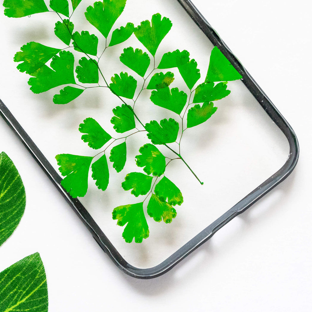 pressed green fern leaf flower iphone xr case clear protective strong iphone bumper case floral neverland floralfy 03