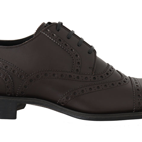 Dolce & Gabbana Brown Leather Wingtip Derby Formal Shoes