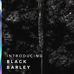 Introducing New Patented Black Barley