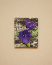 8x10 Gallery Wrap Canvas