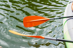 two kayak paddles extending into water