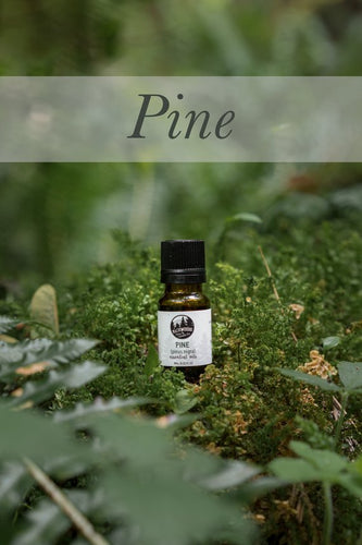 10ML Pine essential oil