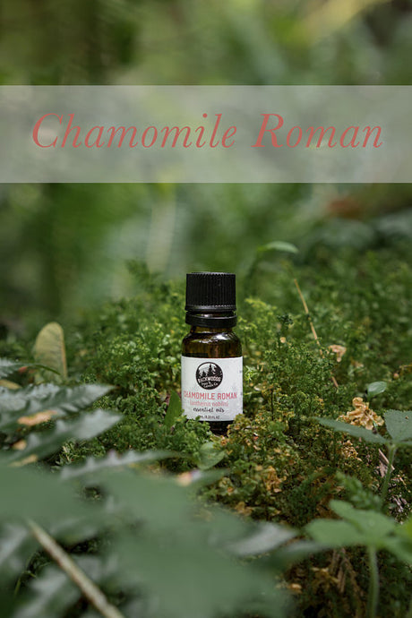 10 ML Roman chamomile essential oil
