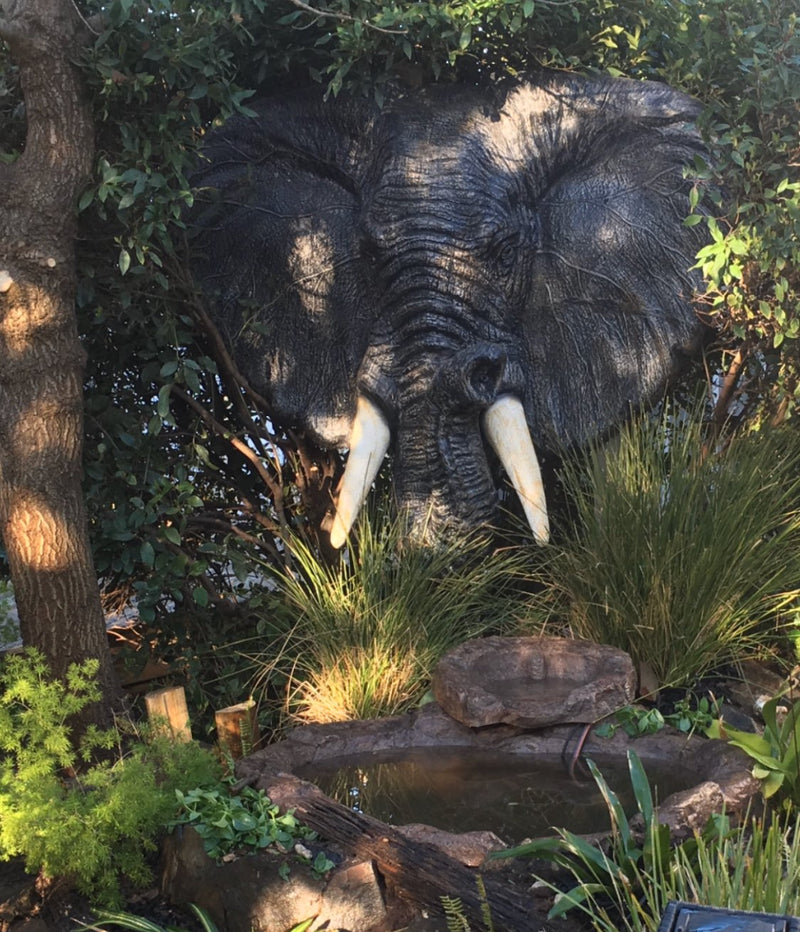 Elephant Head Water Feature