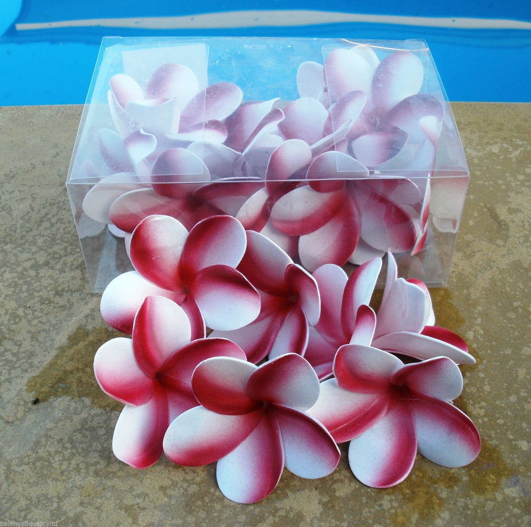 Foam Pink/White Frangipani Flowers Boxed Pack 24 Wedding Scatters