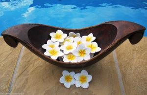 Set 8 Balinese Yellow & White Timber Wooden Frangipani Flowers