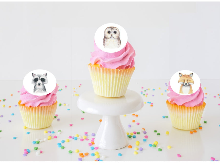 Dream Big Little One Edible Cupcake Images