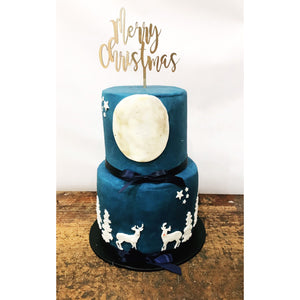 Merry Christmas Acrylic Cake Topper - Aston Blue