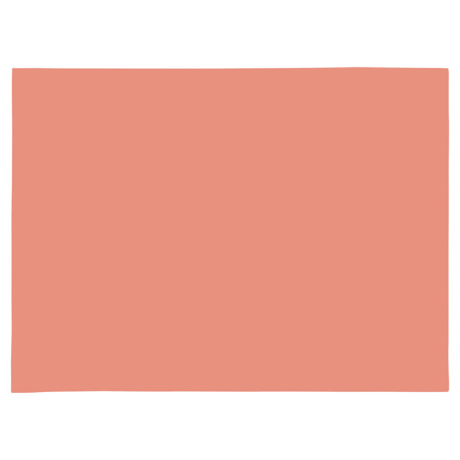 Placemat set of 4-Peach-46cm x 33cm