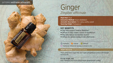 Ginger 15mls