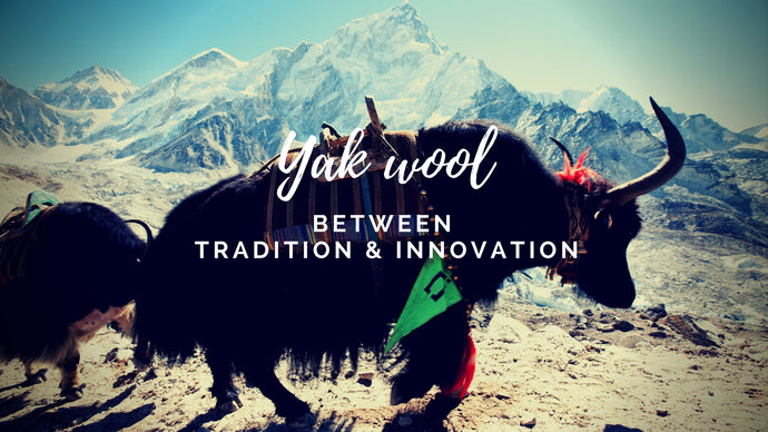 Yak wool between tradition and innovation