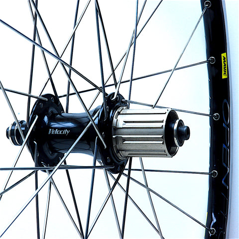 Velocity Sport on Mavic Open Pro UST Rear by XLR8 Performance Bicycle Wheels