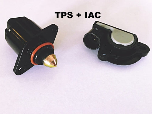 HOLDEN VN VP VR VS VT V6 V8 TPS Throttle Position Sensor and Idle Control Valve