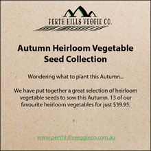 Autumn Heirloom Vegetable Seed Collection