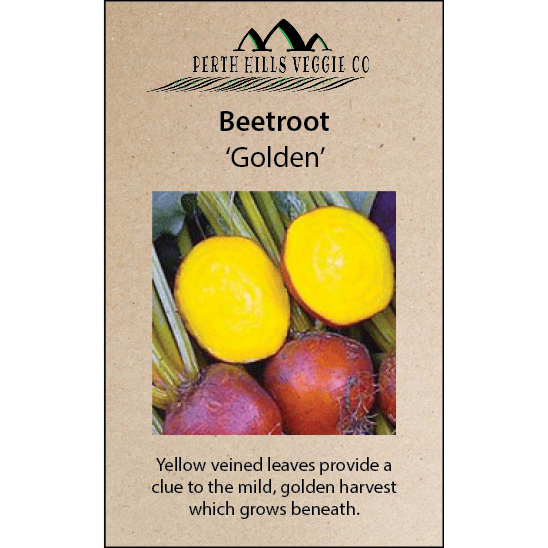 Beetroot 'Golden'