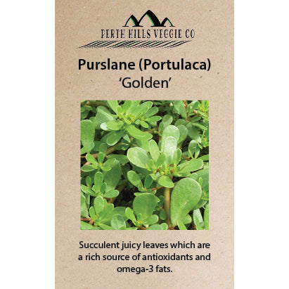 Purslane (Portulaca) 'Golden'