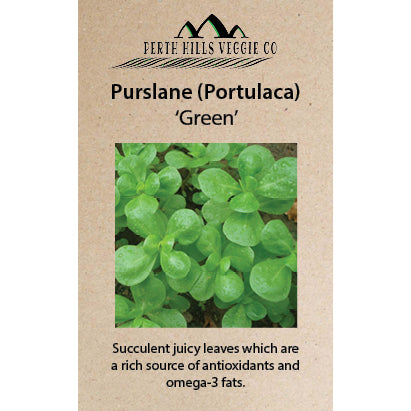 Purslane (Portulaca) 'Green'