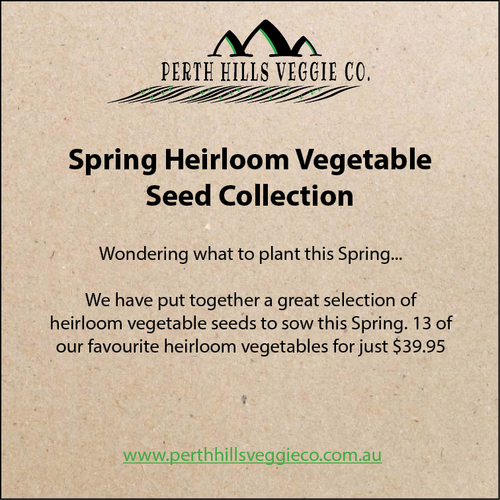 Spring Heirloom Vegetable Seed Collection