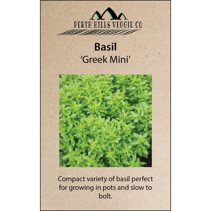 Basil 'Greek Mini'