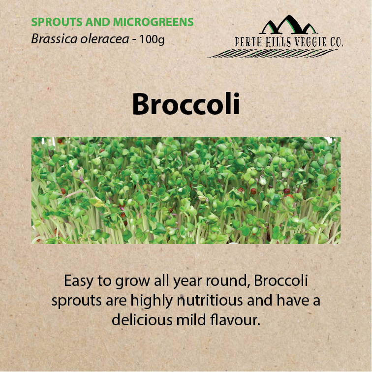 Broccoli Sprouting Seeds (100g Bulk Pack)