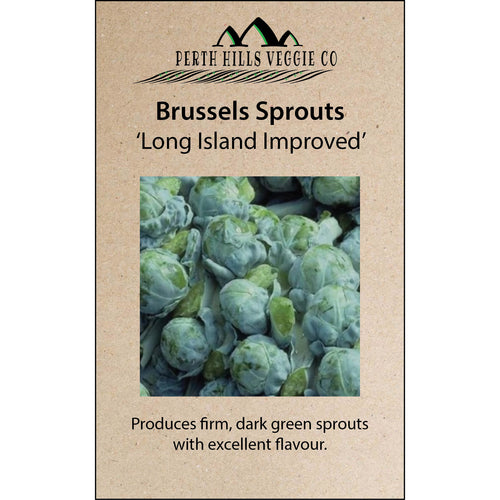 Brussels Sprouts 'Long Island Improved'
