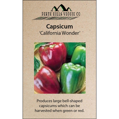 Capsicum 'California Wonder'