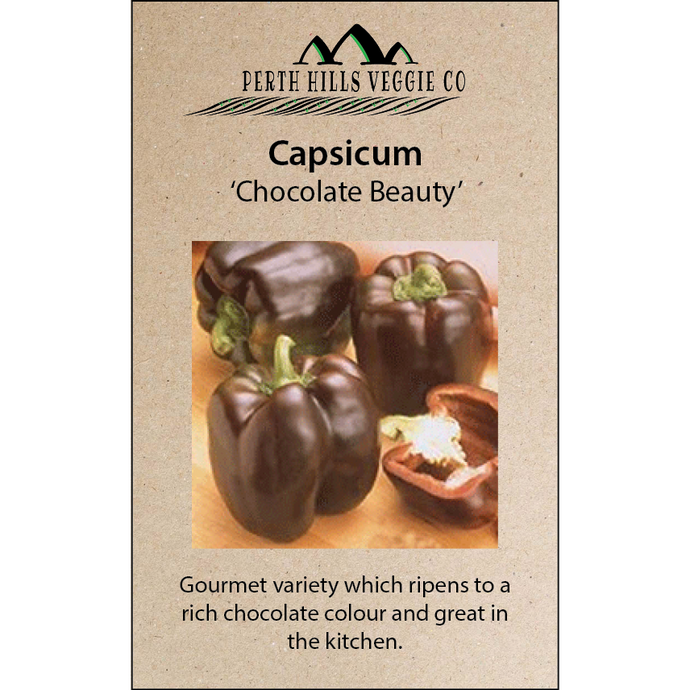 Capsicum 'Chocolate Beauty'