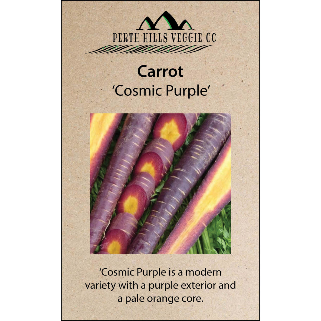 Carrot 'Cosmic Purple'