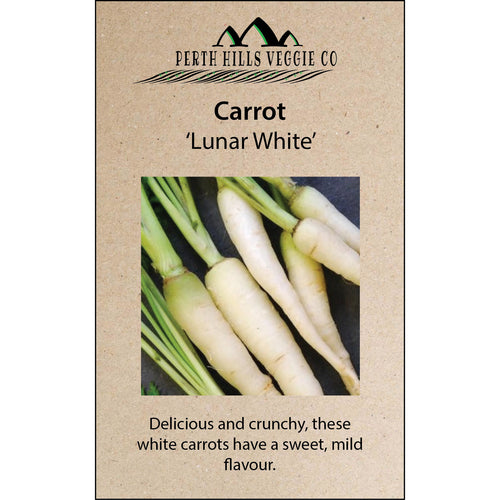 Carrot 'Lunar White'