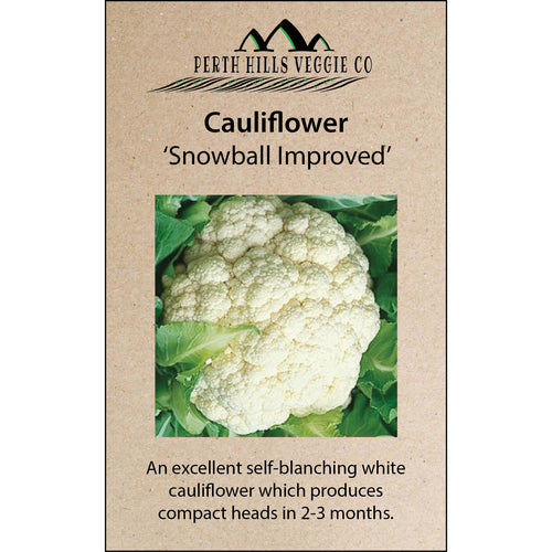 Cauliflower 'Snowball'