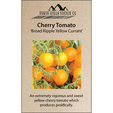 Cherry Tomato 'Broad Ripple Yellow Currant'