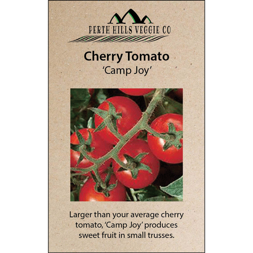 Cherry Tomato 'Camp Joy'