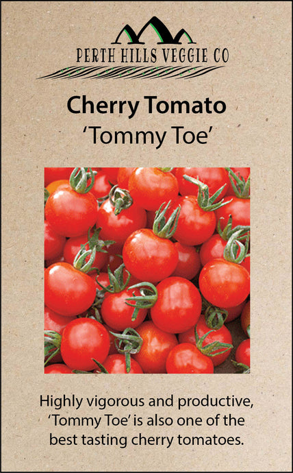 Cherry Tomato 'Tommy Toe'