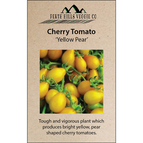 Cherry Tomato 'Yellow Pear'