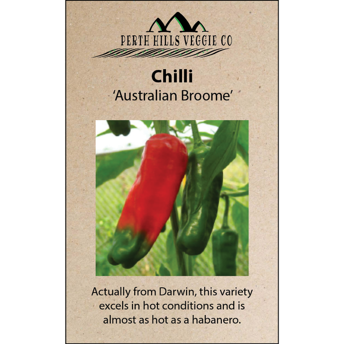 Chilli 'Australian Broome'