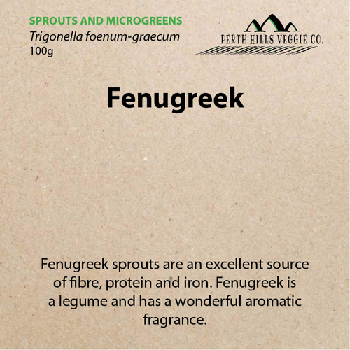 Fenugreek Sprouting Seeds