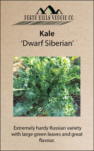 Kale 'Dwarf Siberian Improved'