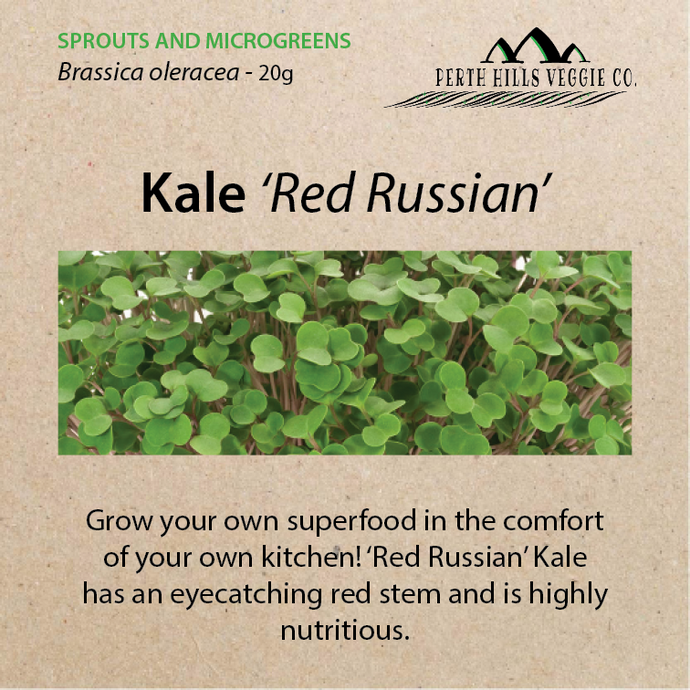 Kale 'Red Russian' Sprouting Seeds