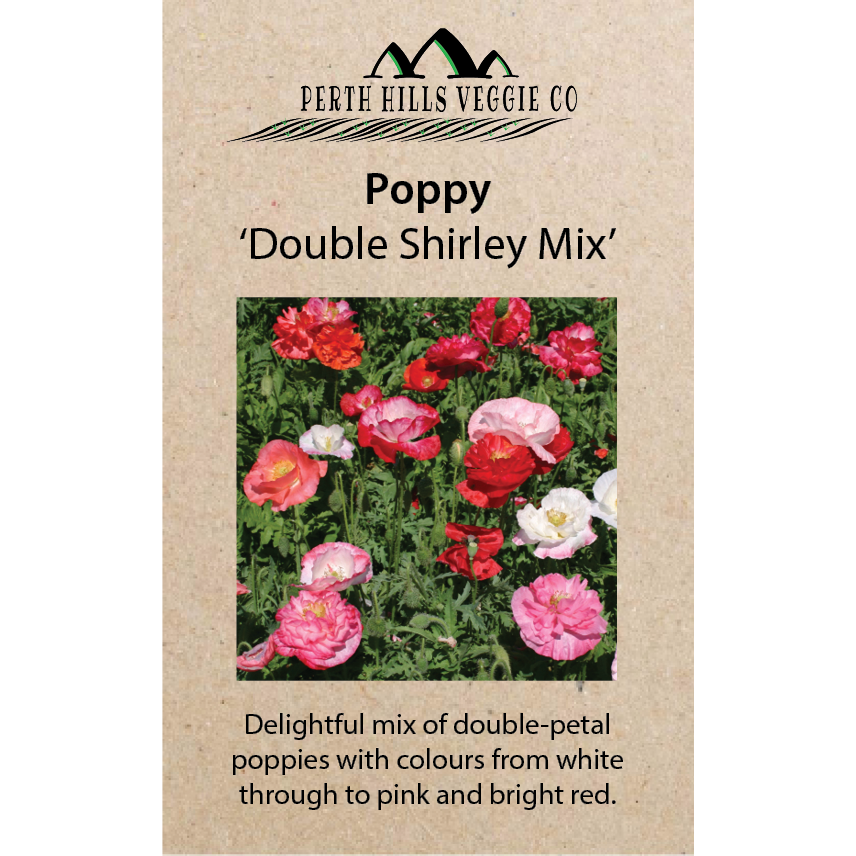 Poppy 'Shirley Double Mix'